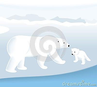 Free Polar Bear (vector) Royalty Free Stock Photography - 2905797