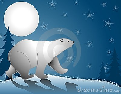 Polar Bear Walking Moonlight
