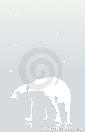 Free Polar Bear Walks On Snowy Day Royalty Free Stock Photo - 3732095