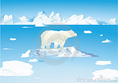 Polar bears and icebergs