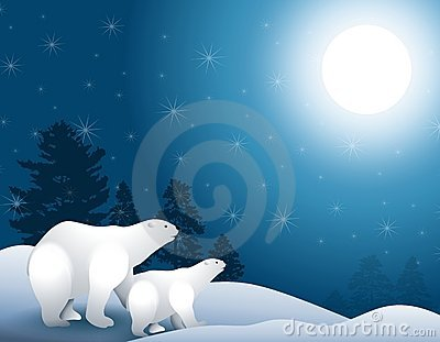 Polar Bears in Moonlight