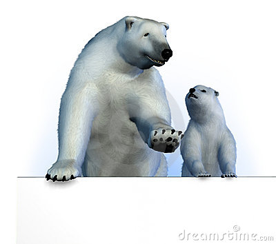 Polar Bears on Sign Edge