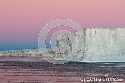 Polar purple