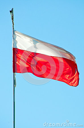 Polera flaggan
