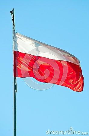 Poleruje flaga