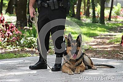 Police Dog 2