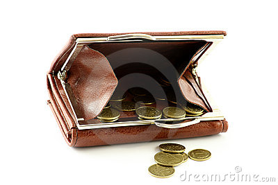 Polish coins in wallet