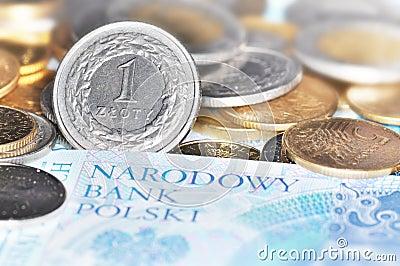 Polish currency (PLN)