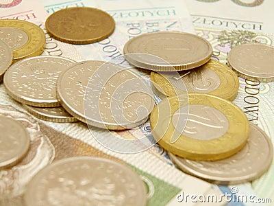 Polish zloty currency