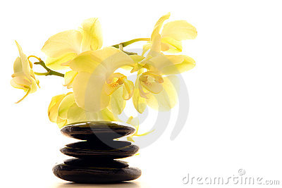 Polished Stones Zen Cairn and Orchid Flower