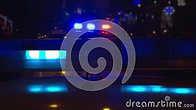 Polizeilichter auf einem Polizeiwagen