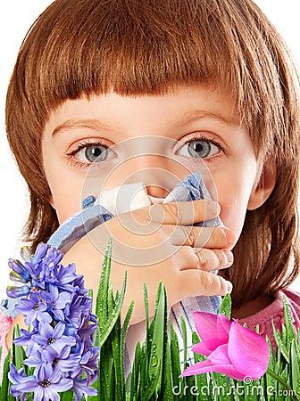 Pollen fever allergy