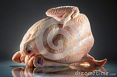 Pollo grezzo