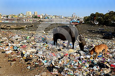 mumbais waste disposal problems In the area of waste segregation, navi mumbai is streets ahead of other  tushar  pawar, deputy municipal commissioner (solid waste management), nmmc   khargar resident bhawana gupta said problems with garbage.