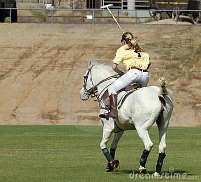 Polo Pony and Rider Editorial Image