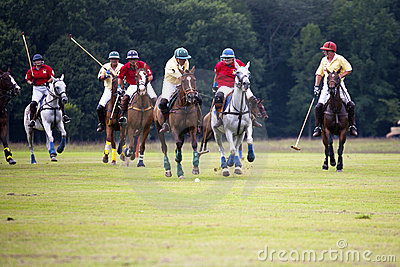 Polo Match Editorial Stock Image