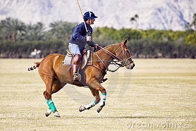 Polo player on galloping horse