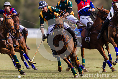 Polo Players Close Focus Action Editorial Image