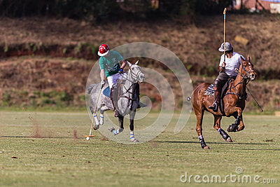 Polo Players Ponies Gallop Editorial Photo