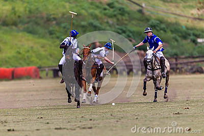 Polo Players Ponies Team Play Editorial Photography