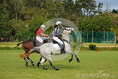 Polocrosse players on their horses Editorial Stock Photo