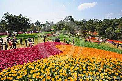 Poly shixiang lake tulip tourism festival Editorial Photo