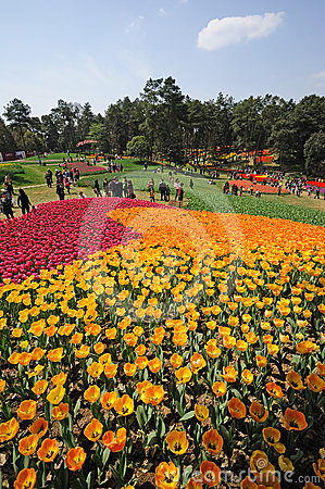Poly shixiang lake tulip tourism festival Editorial Image