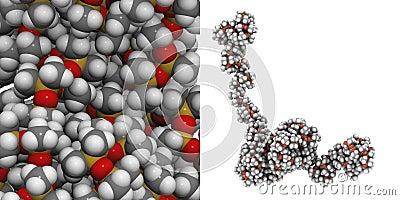 Polydimethylsiloxane (silicone)