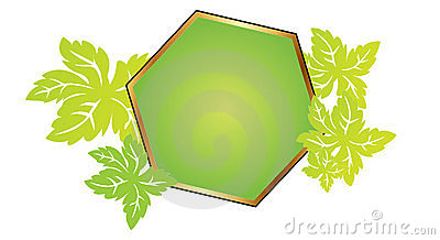 Polygon frame with leafs