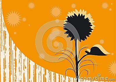 Pomarańczowy tło