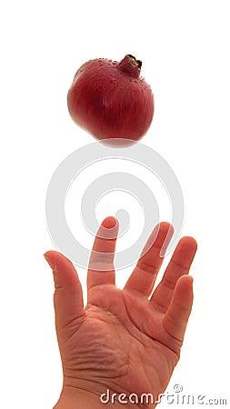 Pomegranate Toss