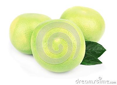 Pomelo citrus