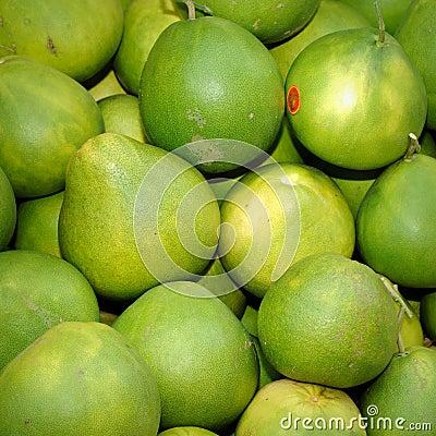 Pomelo (Citrus maxima or Citrus grandis)