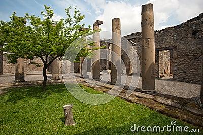 Pompei - Ancient Rome - House of Octavius Quatro