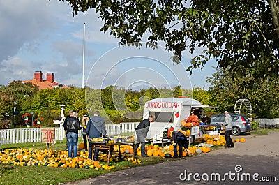 Pompoenen voor verkoop Redactionele Foto