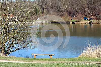 Pond bank Stock Photo