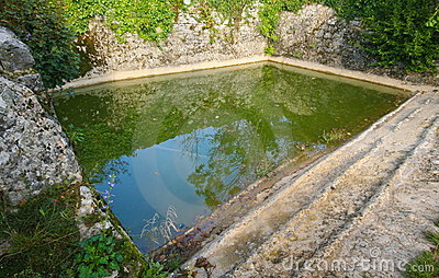 Pond on countryside