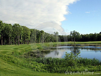 Pond and forest golf