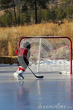 Free Pond Hockey Stock Photography - 17673522