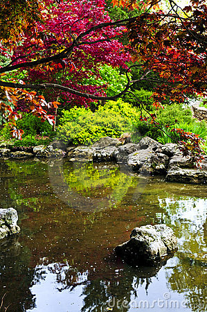 Free Pond In Zen Garden Royalty Free Stock Photo - 5393405