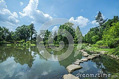 Pond in Japanese Garden in Wroclaw