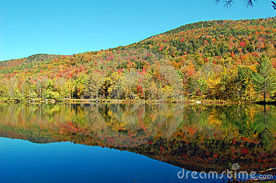 Pond mountain reflections
