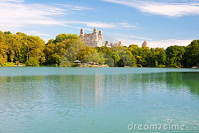 Pond in the NY central park in summer