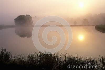 Pond at Sunrise