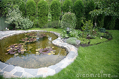 Pond with water-lilys in a yard at home