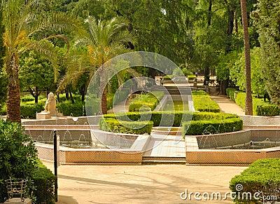 Ponds park