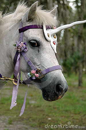 pony unicorn illustration stock image 49634431
