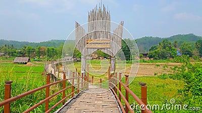 Pont en bambou du Su Tong Pae, Mae Hong Son, Thaïlande banque de vidéos