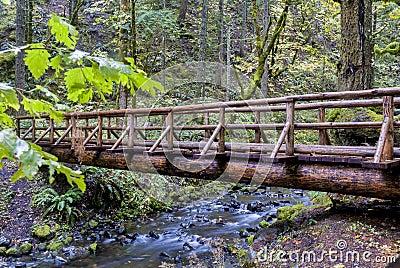 pont en bois avec de l 39 eau pluie l dessus par une for t photos libres de droits image 30801708. Black Bedroom Furniture Sets. Home Design Ideas