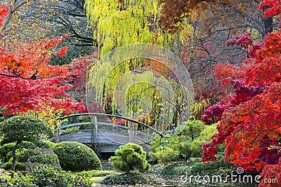 Ponte della luna nei giardini giapponesi immagine stock for Giardini giapponesi